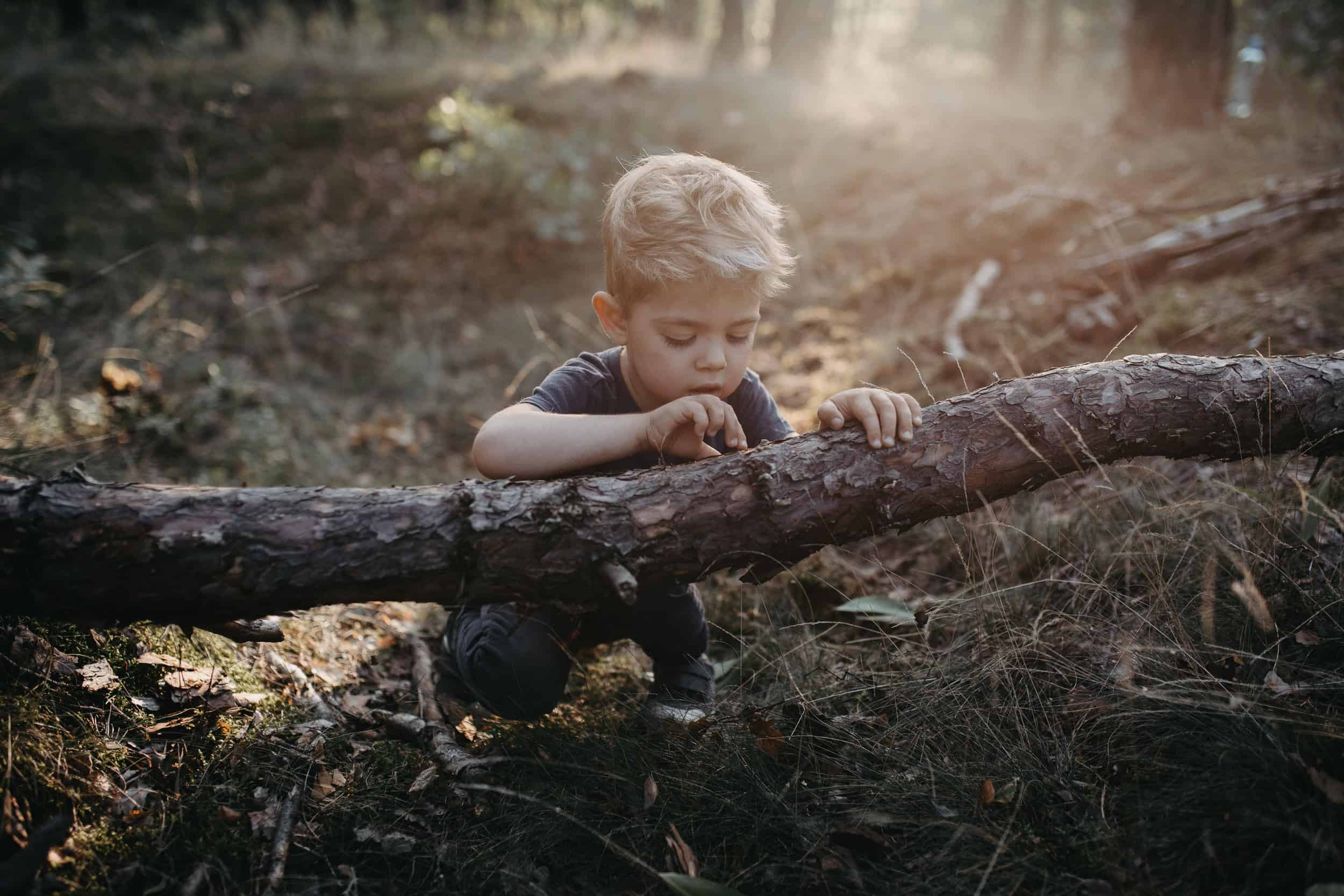 Leśna sesja rodzinna 1