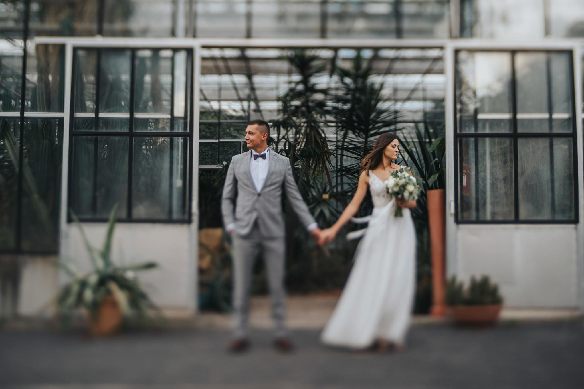Sesja poślubna w oranżerii 29